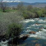 Plan de Gestión de la ZEC Cuenca del río Lozoya y Sierra Norte y de las ZEPA Alto Lozoya