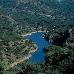 Plan de Gestión de la ZEC Cuencas de los ríos Alberche y Cofio